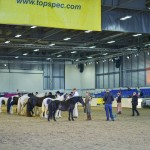 Win Tickets to Equifest 2016
