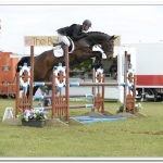 5 Top Show Jumping Tips with Kevin McNab