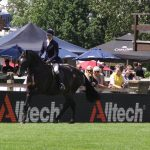 Alltech Showing Classes Hotly Contested at Hickstead
