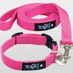 Tottie Dog Collar and Lead Set – Perfect for Xmas