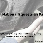 EQUINE CHARITY LAUNCH NATIONAL EQUESTRIAN SAFETY DAY THIS MARCH