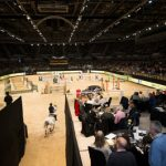 Enjoy Hospitality at its Very Bestat the Liverpool International Horse Show