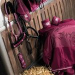 Cavallo Launch New Horse Wear Collection