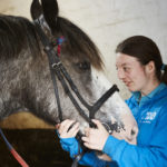 The Profound Effect of Horses on Autistic Riders