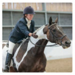 Reaseheath College offers dressage on-line solution