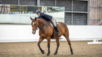 Reaseheath Equestrian Centre repeats on-line competitions