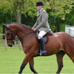 HER MAJESTY THE QUEEN WINS AT VIRTUAL WINDSOR HORSE SHOW
